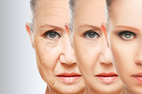 Anti-Aging Program